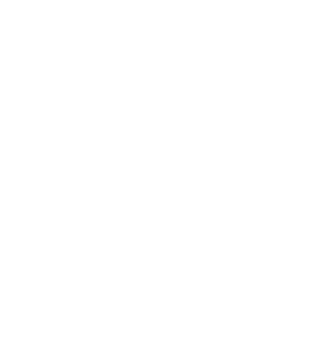 Logo PDS BLANC